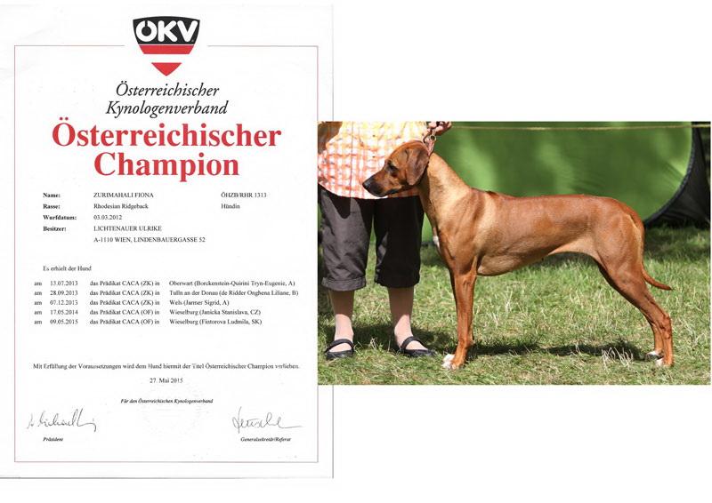 Fiona Champion